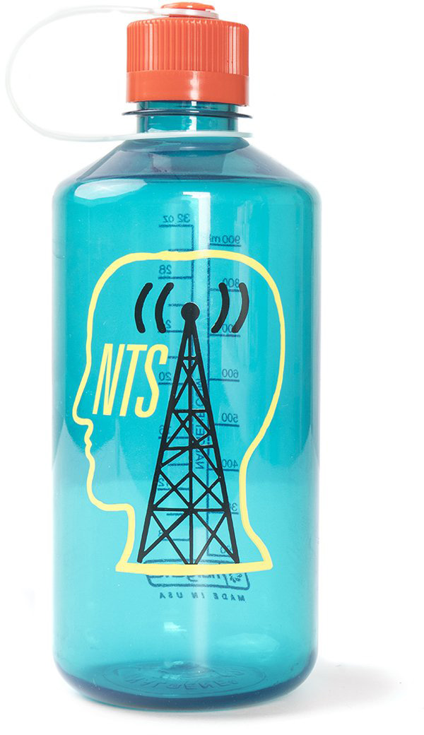 NTS Logo Head 32 Oz. Nalgene Water Bottle — Teal by Brain Dead