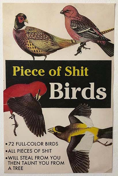 POS Birds Poster by Paperback Paradise